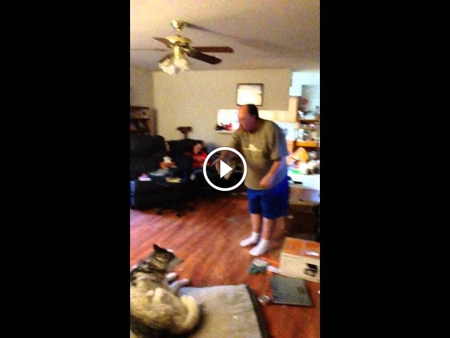 You Won't Believe What This Dog Does When His Owner Yells At Him